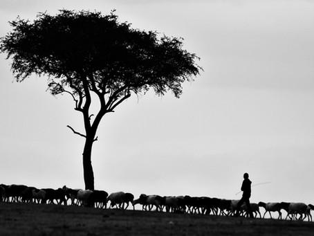 The Good Shepherd (March 16, 2020)