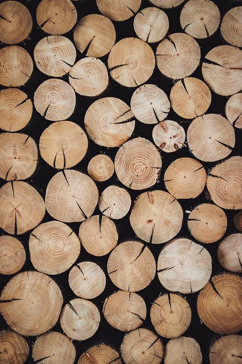 Drewno opałowe - Grab/Buk/Jesion