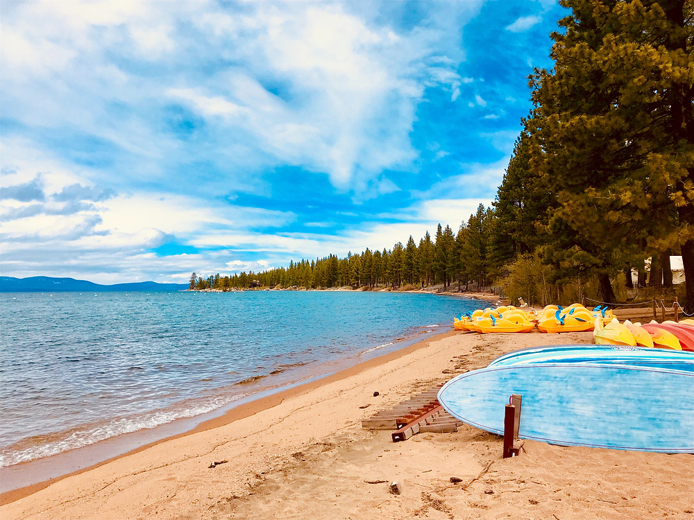 A beach on lake tahoe with paddleboards