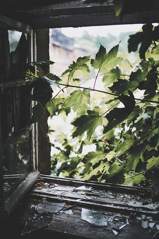 Image by Julia Joppien