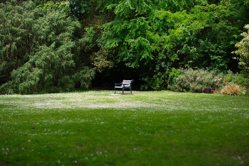 Parc au banc vide