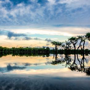 Pięć motywów żeby wyjechać do Brazylii - Drugi motyw – naturalne piękno i klimat.