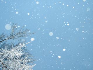 Preparing Your Landscape for Winter