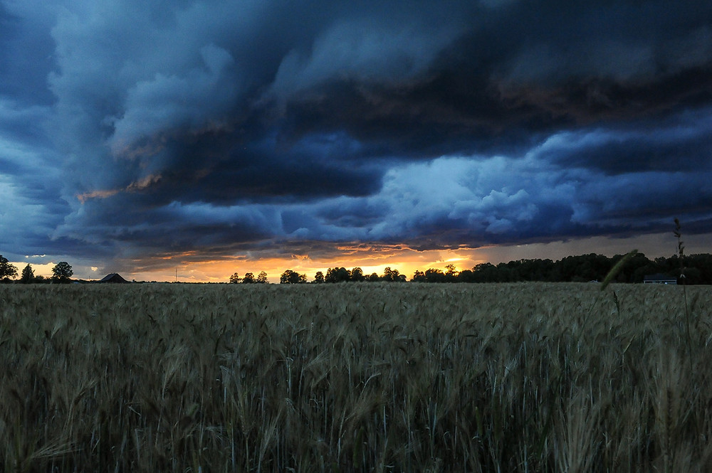 Rain clouds over a field at night.