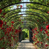 Visites de jardins extraordinaires
