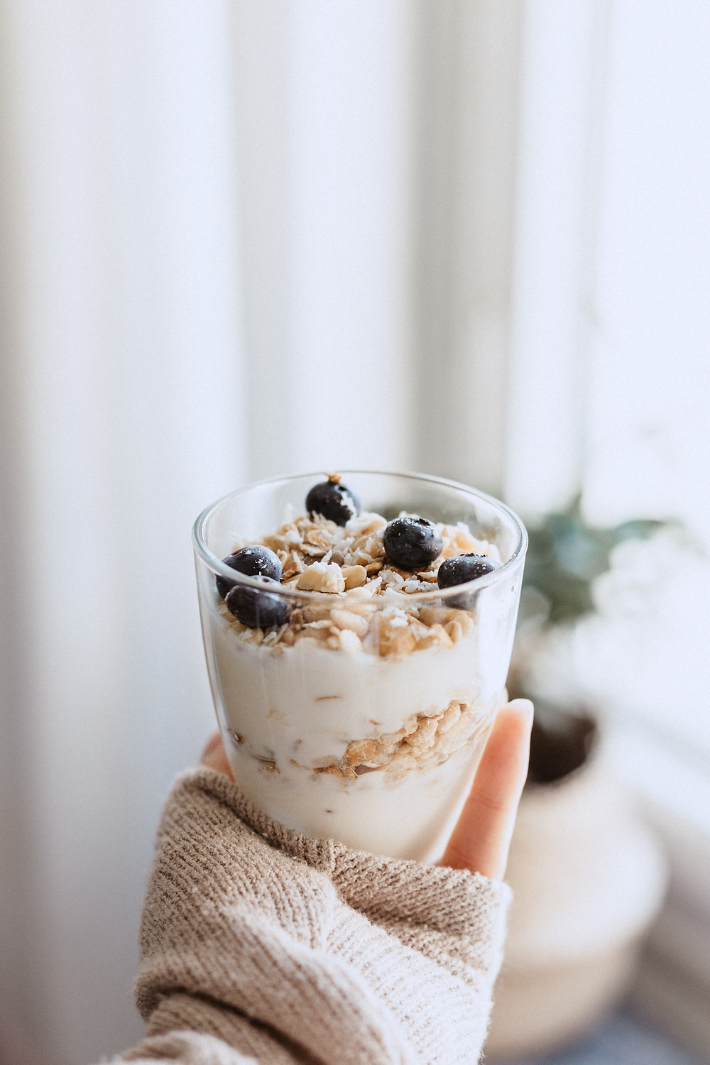 greek yoghurt with blueberries and oats