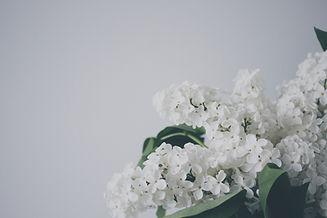 Image by Veri Ivanova