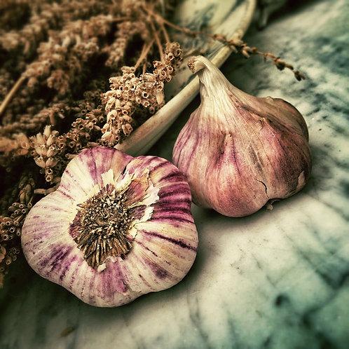5 Organic Garlic Bulbs (Autumn Planting)
