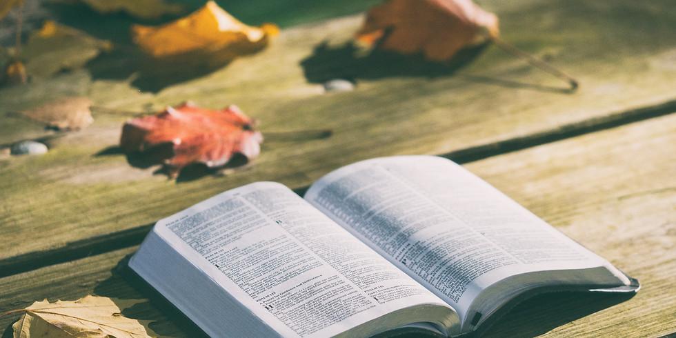哈巴谷書聖經講座 IV