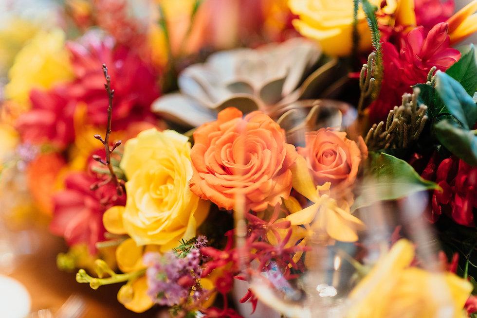 verzameling gekleurde bloemen en planten