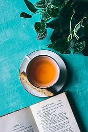 Organic Green Tea & Lemon Myrtle