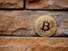 The Rise (and Rise?) of Bitcoin