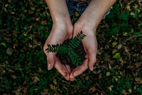 Eco Learner