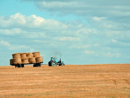 Nova Lei transferiria acres para agricultores negros