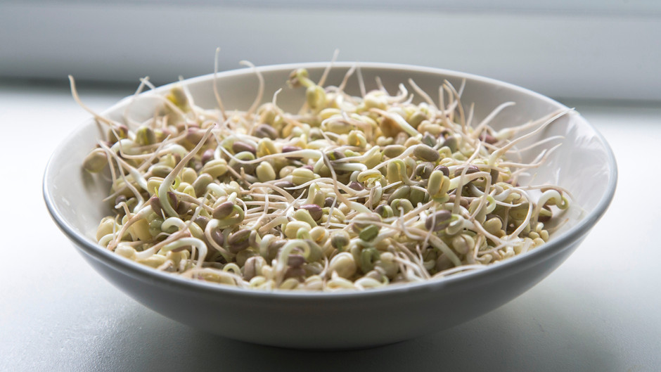 Sprouting for Health