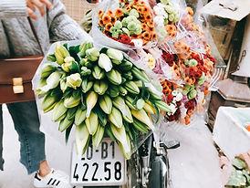 Image by Hà Đoàn