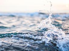Wasser - Bedeutung & Erscheinungsformen