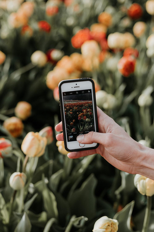 have a social media detox