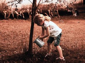 Five Garden Features Children Love Other Than A Lawn