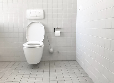 Why I Give a Crap About Poop
