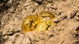 Bitcoin Miners Are Accumulating