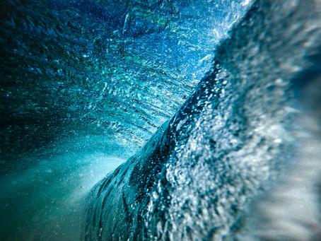Votre naturopathe zoom sur : le plasma marin