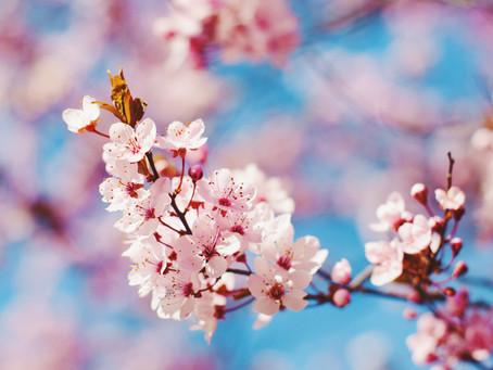 Smile it's Spring!
