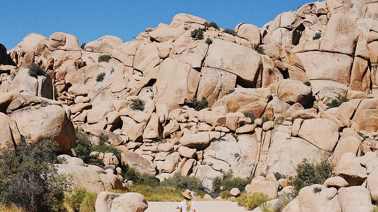 Learn to Rock Climb