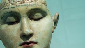 Base de Consciência através dos 5 Sentidos