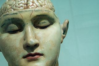 David Mattos, cerveau, psychologie, cerveau