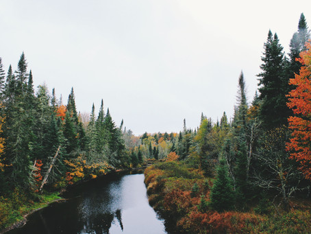 September Spectacular