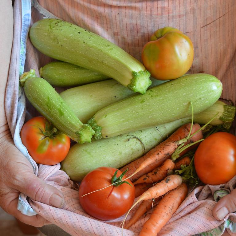 Virtual Summer Supper: Italian Veggie Tart