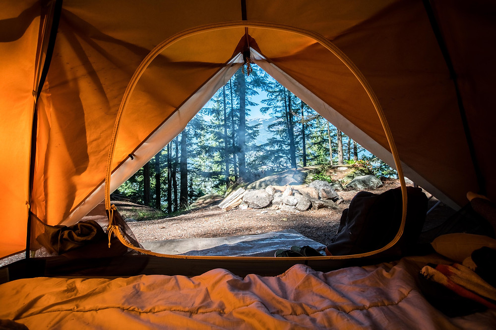 The view of adventure in a forrest from the inside of a camping tent.