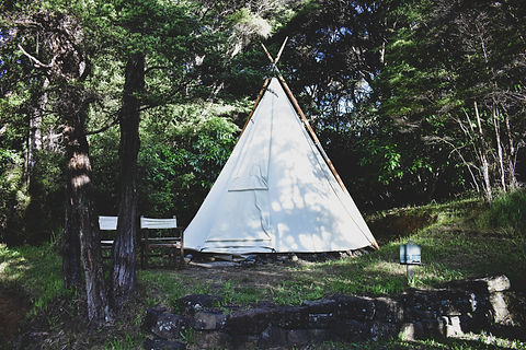 Stay in a teepee at WILD Recharge Retreats at GROW Sustainable Living Toms Creek