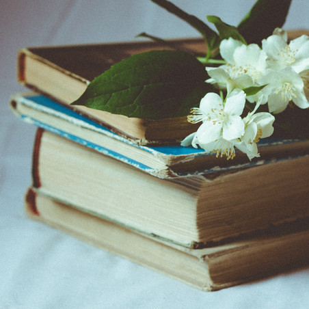 Book Feature: Soft Spot in a Stone Wall by Tamara Gaupp