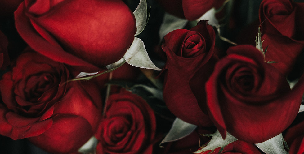 Long Stem Red Roses - From $90