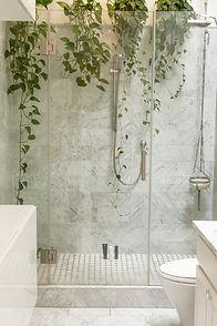 Image de fond : douche avec des plantes grimpantes.