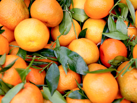 O poder da vitamina C: o que é o efeito pleiotrópico e como funciona