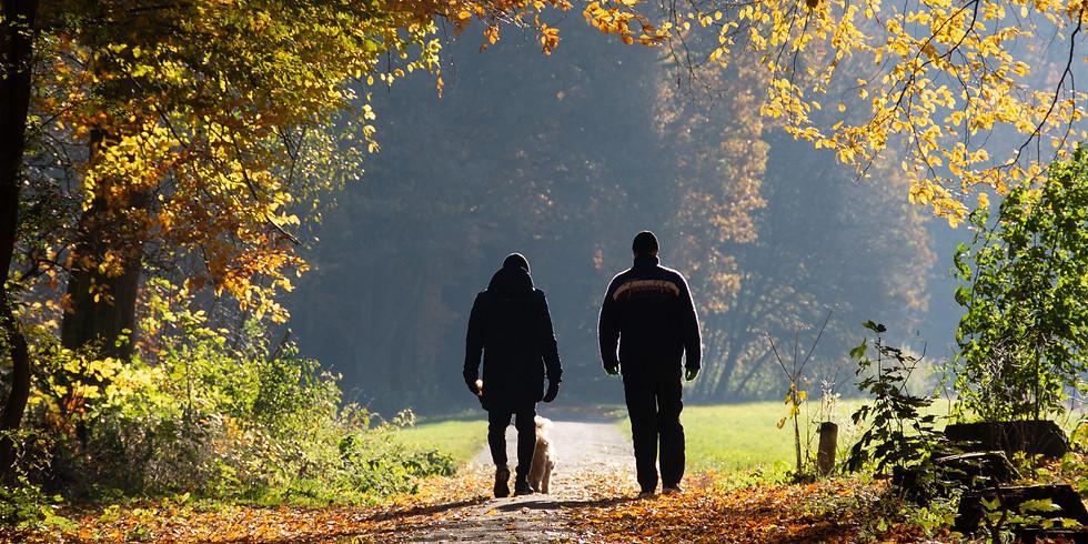 Wednesday Walk For Health