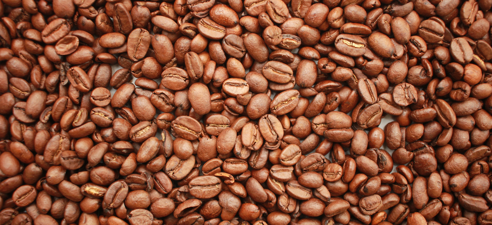 Colombian Coffee Beans