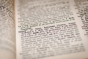 PROFESSIONAL TRANSLATION & PROOFREADING  into +30 languages.