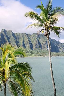 Lugares que ver en Hawaii Oahu