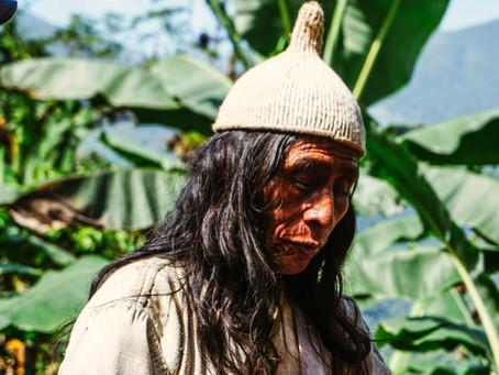 Pueblos indígenas hacen un llamado en contra de la demanda que protege el territorio ancestral