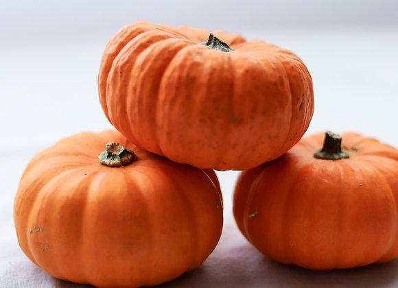Pumpkin (per item)