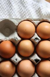 Int'egg'ral ingredients