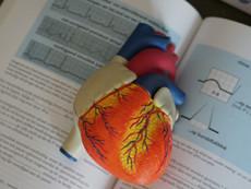 ECG Reading
