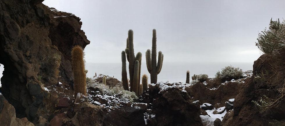 voyage - andes - Bolivie