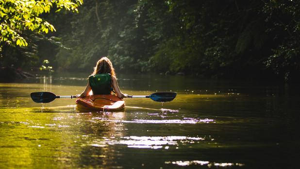 Kayak dans les mangroves, photo de Filip Mroz