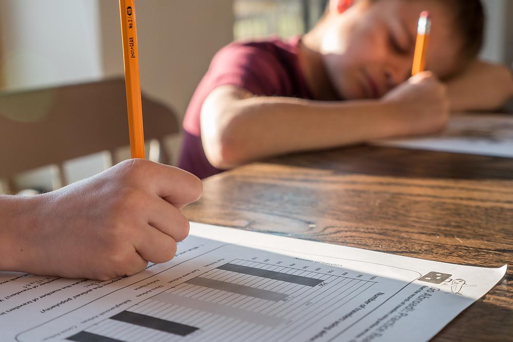 lockdown homeschooling ideas