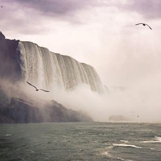 Ramsar: The Niagara River Corridor